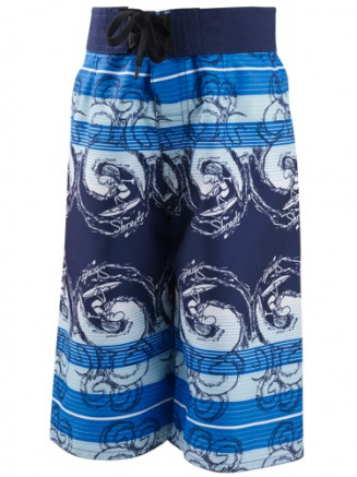 Boys Monster Wave Boardshorts Blue